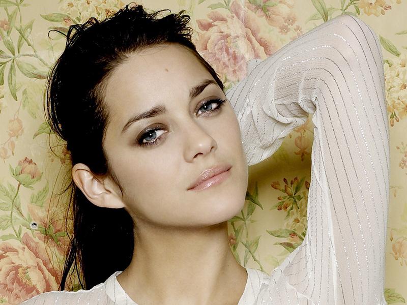 фото актрисы звезды Марион Котийяр